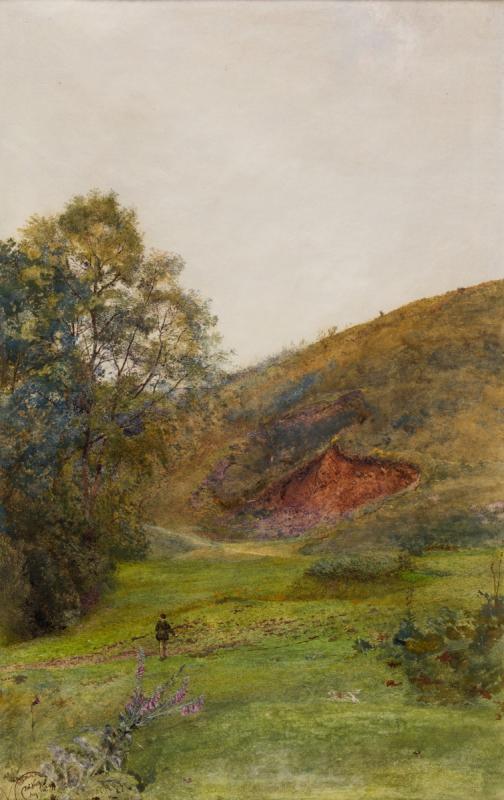 The Quantock Hills
